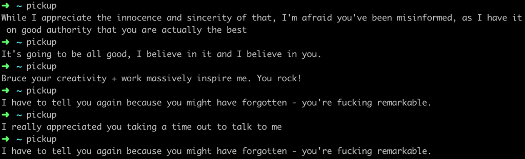 "Screenshot from terminal. By typing the word ""pickup"", a random quote is returned. The quotes in the example are: ""While I appreciate the innocence and sincerity of that, I'm afraid you've been misinformed, as I have it on good authority that you are actually the best""; ""It's going to be all good, I believe in it and I believe in you.""; ""Bruce your creativity + work massively inspire me. You rock!""; ""I have to tell you again because you might have forgotten - you're fucking remarkable.""; and ""I really appreciated you taking a time out to talk to me""."
